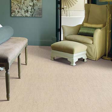Caress Carpet by Shaw | Conroe, TX